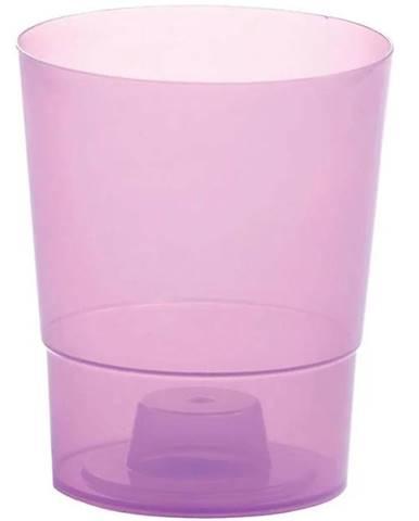Kvetinač Coubi fialový DSTO125 CR91G