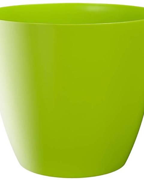 MERKURY MARKET Obal Ella lesk 13 cm green
