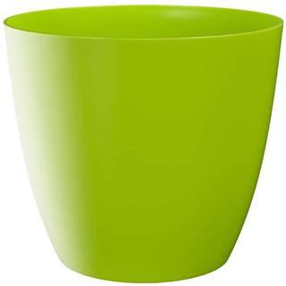 Obal Ella lesk 13 cm green