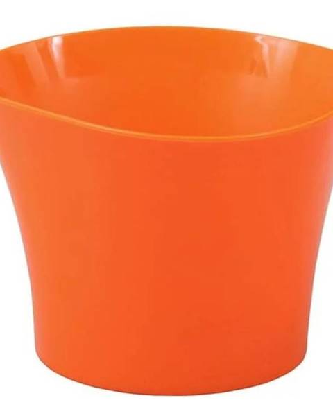 MERKURY MARKET Obal Primule 12 cm/oranžový