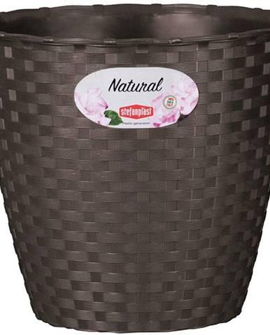 Kvetináč Natural 14 cm/Hn