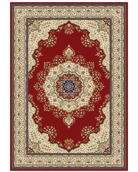 Kondela Kendra Typ 3 koberec 67x120 cm vínovočervená