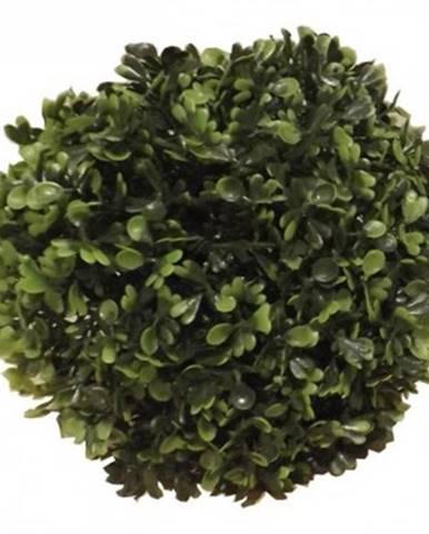 Umelá kvetina Buxus ø 20 cm%