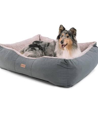 Brunolie Emma, pelech pre psa, kôš pre psa, možnosť prania, protišmykový, priedušný, obojstranný matrac, vankúš, veľkosť L (100 × 30 × 90 cm)