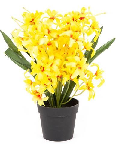 Umelá kvetina Ľalia drobnokvetá v kvetináči žltá, 30 cm
