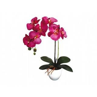 Umelá orchidea v kvetináči 7 kvetov, 55 cm, fialová